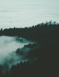 foggy-1149652_960_720
